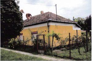 Mátyás15